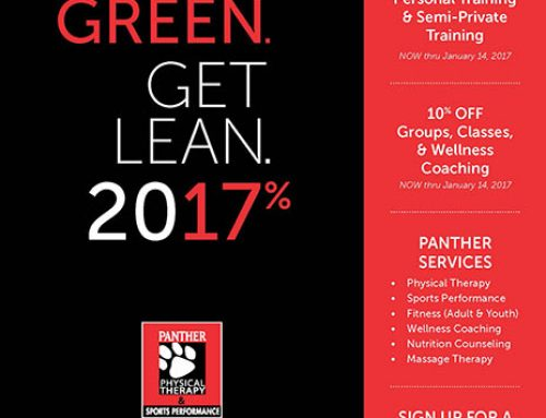 Save Green, Get Lean 2017